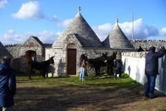 Turismo in Puglia, calano le prenotazioni negli agriturismi: -12%