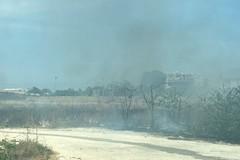 Incendio in via Andria, in fiamme il terreno incolto a ridosso della ferrovia