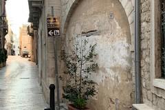 Centro storico, via D'Angiò: l'associazione Trani Vera chiede la riapertura