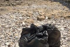 Quattro giovani ripuliscono dai rifiuti parte della litoranea tranese
