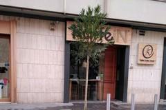 Verde pubblico, ultimata la piantumazione di nuovi alberi in città