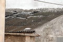 Rimozione dell'amianto dagli immobili comunali, previsti contributi per i proprietari