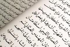 Al Comune di Trani lezioni di arabo con la rifugiata politica Zainab