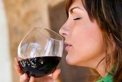 L'origine del vino, tra storia e curiosità - parte 2