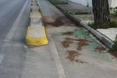 Degrado e incuria per la pista ciclabile di Capirro