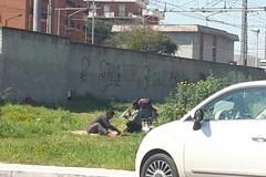 """Villa Bini, da parco pubblico a """"prato verde"""" per picnic"""