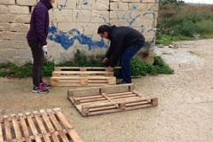 Cani randagi, l'Enpa costruisce le cucce in zona Boccadoro