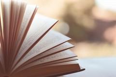 Zitoli: «La sfida di oggi è garantire l'accesso al libro a tutti ogni ogni barriera»