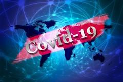 Covid Puglia, scendono gli attualmente positivi , salgono i ricoverati