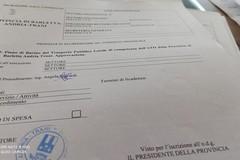 """Collegamento Aeroporto - Trani: """"E' già contenuto nel Piano di Bacino Trasporto pubblico locale"""""""