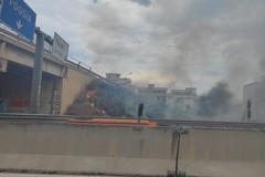 Incendio in un terreno in zona Sant'Angelo, disagi alla circolazione sulla 16bis