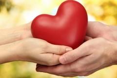 Donazione di organi, oggi l'incontro di informazione e sensibilizzazione