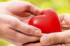 Incidente sulla Trani-Andria, donati gli organi della vittima Michele Mastrapasqua
