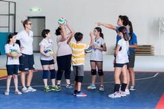 Fortitudo, il settore volley approda ai campionati federali