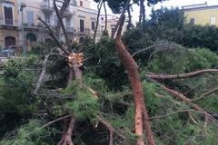 Meteo, allerta Arancione: Villa comunale, Cimitero e Villa Bini resteranno chiusi