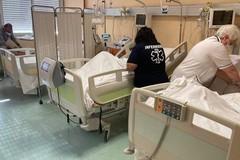 Non solo covid, paziente salvata dal personale medico del Dimiccoli di Barletta