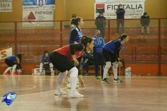 La Lavinia Group Volley Trani torna in campo: domenica sfida interna contro la Primadonna Bari