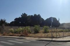 Bonificato il terreno confinante con Villa Telesio