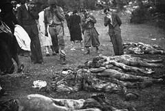 Giorno del ricordo, oggi a Trani commemorazione della tragedia delle foibe