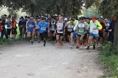"""Trani Marathon, in scena la quinta edizione di """"Cross"""""""