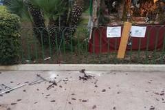Presepe di piazza Albanese, altri danni e anche il furto di una bici
