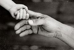 Fondi per curare il piccolo Felice: domani raccolta in piazza Libertà