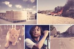 Le Nuove Pagelle: cartelloni estivi e traffico da rallentare, firme contro cubi e roghi. E il gattino rosso che miagola