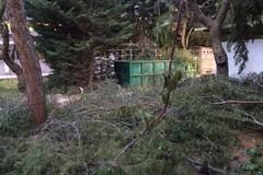 Ospedale di Trani, dalla fuga dei reparti alla giungla in cortile