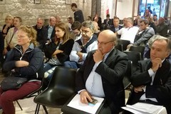 Trani, Partito Democratico: No segreteria, no party