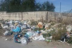 Ancora rifiuti in via Duchessa d'Andria, la storia è sempre la stessa
