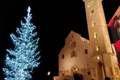 Sere d'incanto, al via il Natale di Fondazione Seca: domani l'accensione dell'albero di Natale in piazza Duomo