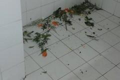 Cimitero, il degrado della camera funeraria