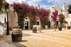 Il Moscato di Trani Dop 2015 trionfa al 59° concorso nazionale dei vini Di Pramaggiore