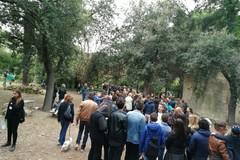 Villa Telesio, in 5mila hanno visitato l'isola verde di Pozzo Piano