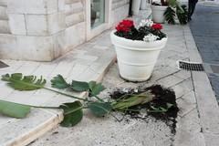 Vandalismo notturno in piazza Libertà: per il gusto di distruggere