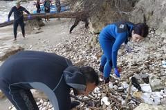 Il Centro Sub Andria e l'associazione Suppiamo ripuliscono a Trani le spiagge di Colonna, Lido Mongelli e Mattinelle