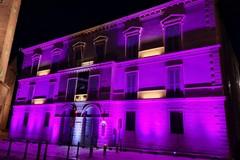 Giornata mondiale dell'epilessia: Palazzo Lodispoto s'illumina di viola