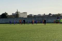 Amara sconfitta dopo sei giornate imbattute per Apulia Trani
