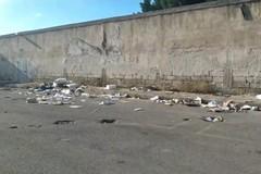 Stadio di Trani: al mattino un'isola ecologica, dal pomeriggio una discarica libera