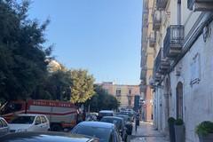 Gabbiano intrappolato su un balcone tratto in salvo dai vigili del fuoco