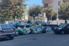 Cumuli di rifiuti, il risveglio da incubo in via Gisotti