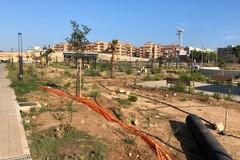 Parco di via delle Tufare si trasforma in una discarica a cielo aperto