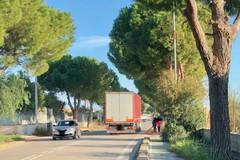 Rallentatori, segnaletica, luci: via Martiri di Palermo va messa in sicurezza