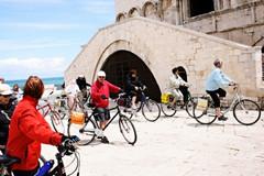 Gestione dell'imprenditorialità turistica: pubblicato il bando del corso biennale in programma nella Bat