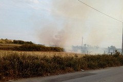 Via Andria, nel pomeriggio sterpaglie in fiamme