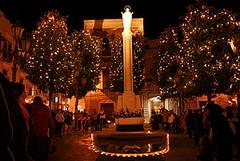 Luminarie e fioriere di Natale, il Comune ha speso 4 mila euro