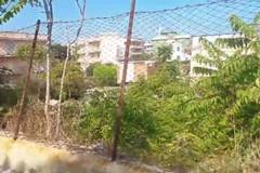 Terreni comunali in preda al degrado: la denuncia della consigliera Barresi