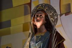Oggi Trani in festa per la solennità di Santa Lucia