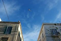 Trani, elicottero dei Carabinieri sorvola la città