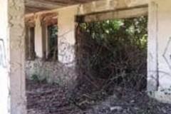 Proprietà in via Tolomeo abbandonata da oltre 20 anni: la denuncia della Barresi